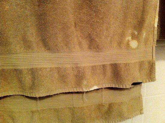 Safari Club : Blemishes on towels