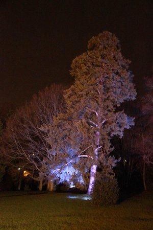 Novotel Chateau de Maffliers : Le domaine la nuit