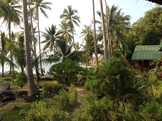 Sai Thong Resort & Spa: view from our bungalow
