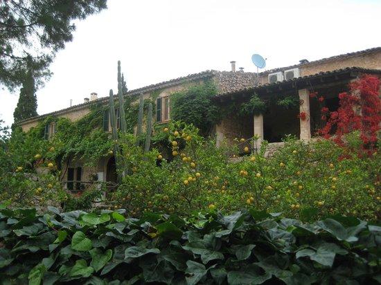 Fangar Finca : vista de unidad de alojamiento