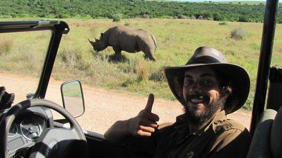 Chrislin African Lodge: Addo Elephant Park rhino sighting