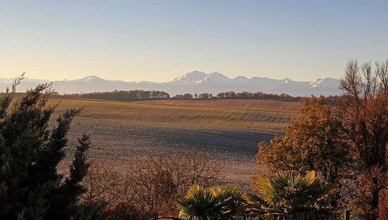 Le Domaine de Loustalviel: View from Loustalviel