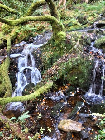 Torc Mountain Walk: An unexpected waterfall after a big rain.