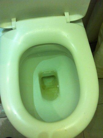 hangout@jonker: toilet seat