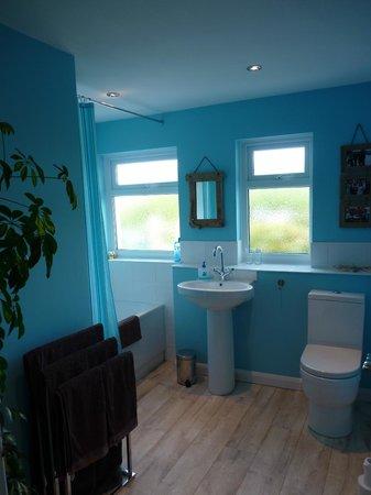 Green Rooms B&B : Bathroom