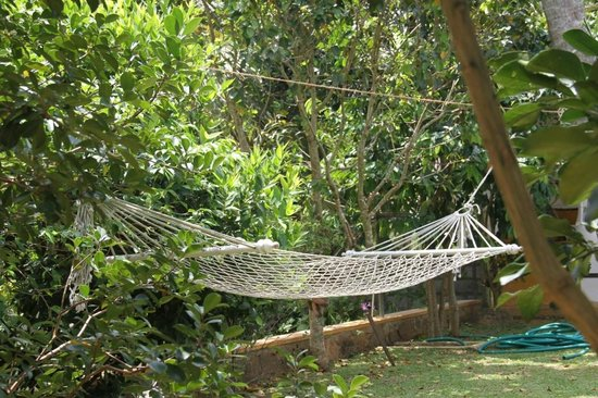 Mahawewa Nature Resort: Garden