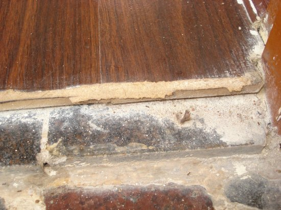 Hotel Ramakrishna : closer view of the rusted nails
