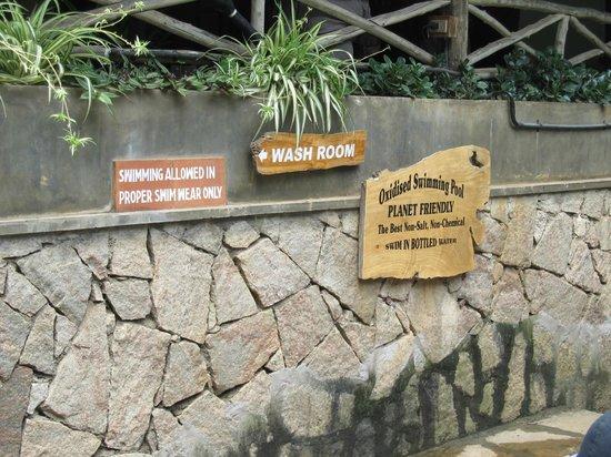 Spice Village : Pool