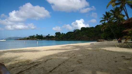 Virgin Islands Campground: Honeymoon Beach, what a tough crowd to handle....