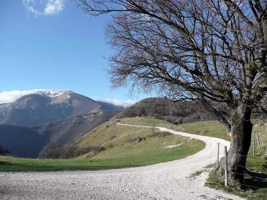 Umbria Goretti Private Day Tours