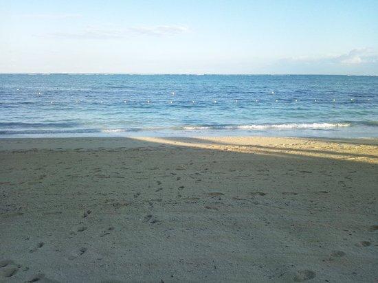 Tiger Beach : 美しい砂浜