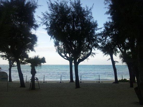 Tiger Beach : ホテルの前からのぞむ