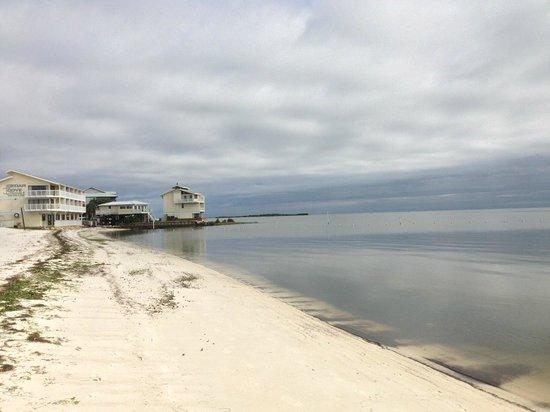 Mermaids Landing: Beach at Cedar Key 5 Minutes Away