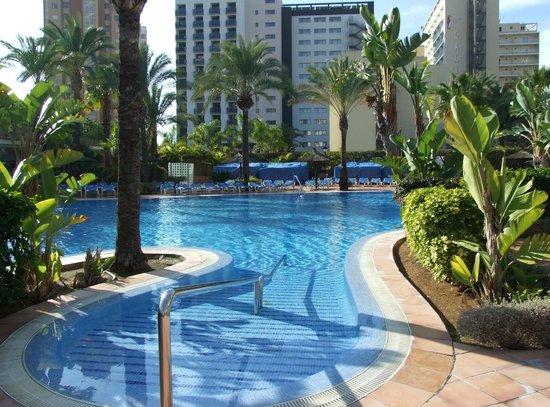 Sol Pelícanos Ocas: Pool 3