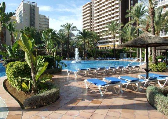 Sol Pelícanos Ocas: Pool 1