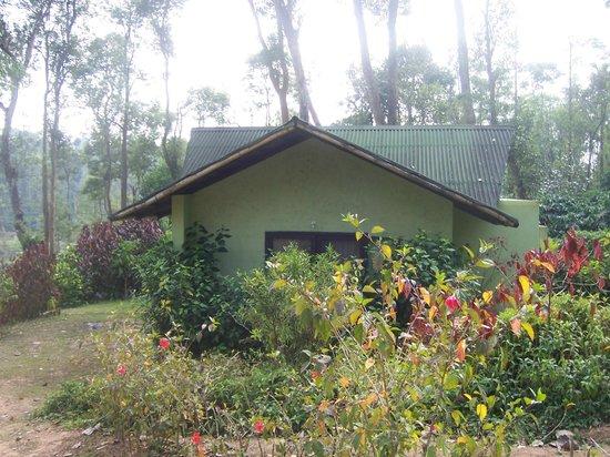 Machaan Nagarhole : Our Cottage