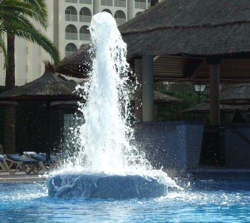 Sol Pelícanos Ocas: Pool 4