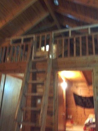 Belfer's Dead Sea Cabins: the room