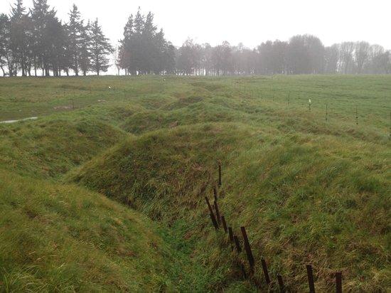 The Battlefields Experience : Newfoundland Memorial