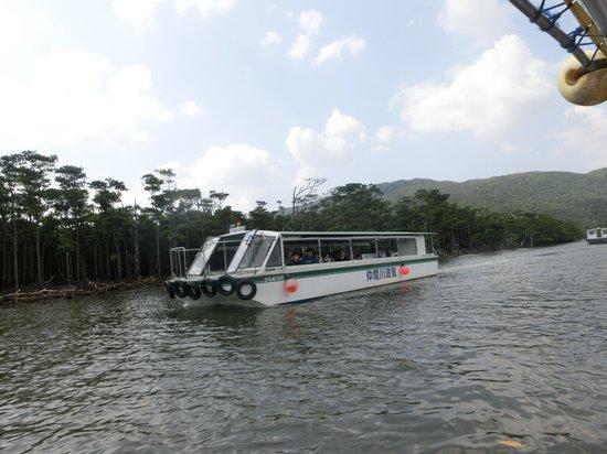 Nakamagawa Pleasure Boat: このフェリーで観光