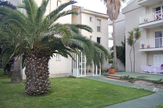 Llevant Apartments