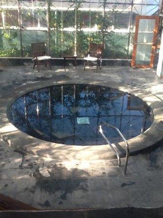 Monteverde Lodge & Gardens : jacuzzi