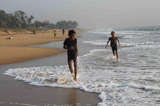 Golden Sun Hotel & Beach Resort : Beach