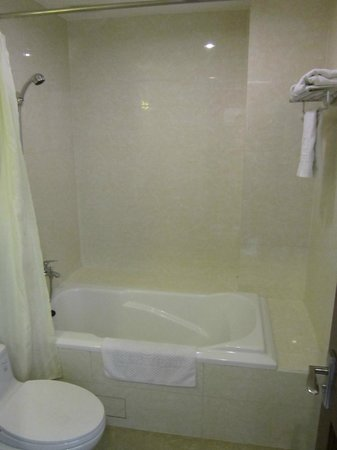 Alagon Western Hotel: Bathroom