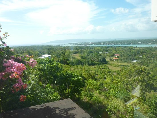Bohol Vantage Resort: View from terrass