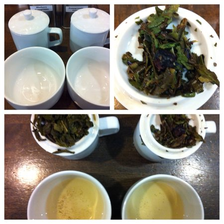 World Tea House: taste any of our teas for free