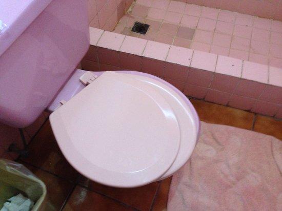 Hotel Playa Linda: Toilet seat