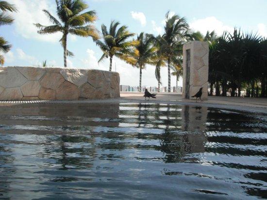 Villa del Palmar Cancun Beach Resort & Spa : EAU