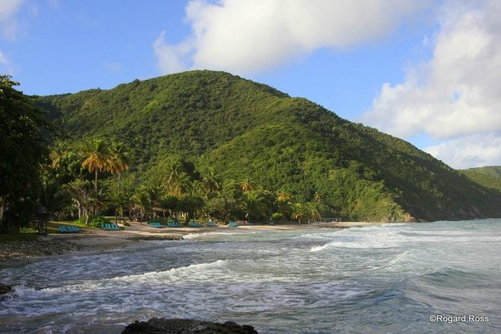 Renaissance St. Croix Carambola Beach Resort & Spa: The beach and hills