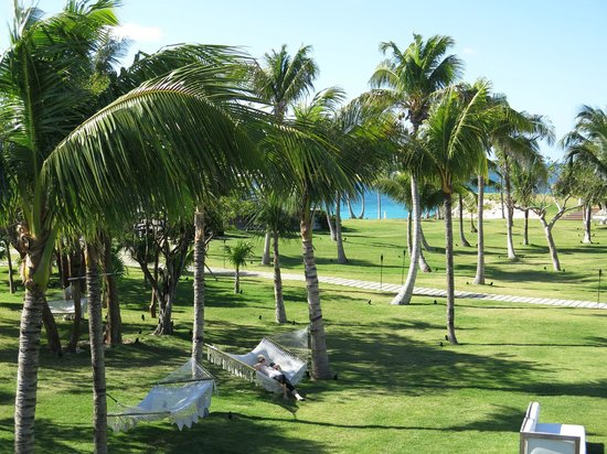 The Cove Eleuthera: The view from our room