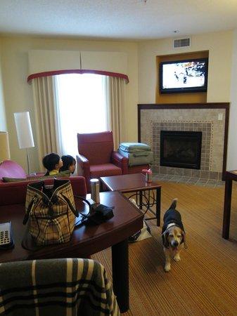 Residence Inn Toledo Maumee : living room