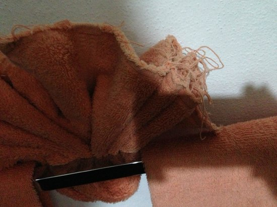 Hotel Casa Virreyes : he frayed towels. Again, at a reasonable price, I would be ok with this, but not at $170 US
