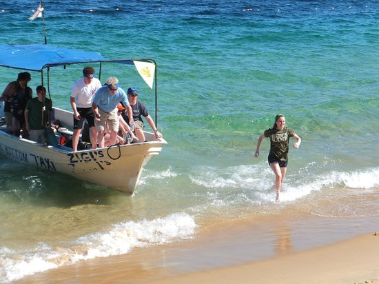A-maze-in Cabo Race: And the Green Team takes the lead!