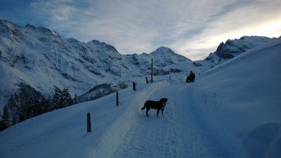 Hotel Eiger: Wanderung im Schnee