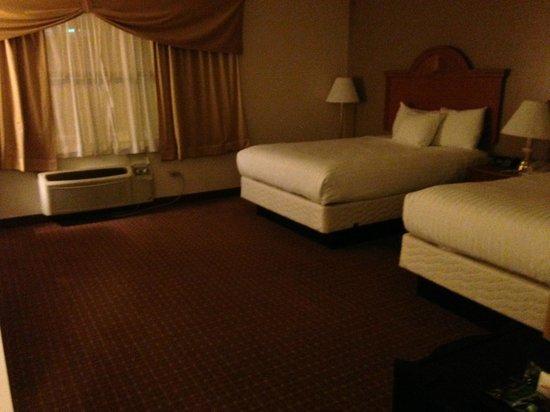 Chicago South Loop Hotel: South Loop Hotel Room