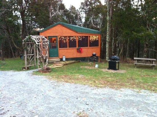 Rim Rock's Dogwood Cabins : Bear's Deb cabin