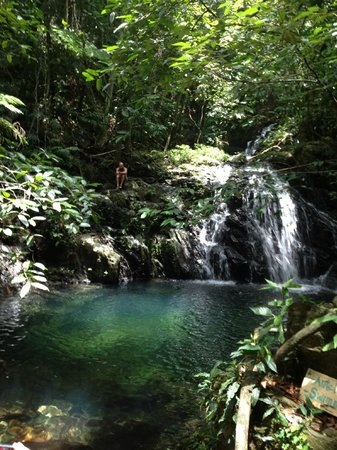 Bocawina Rainforest Resort & Adventures: Antelope Falls