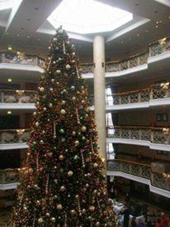 Van der Valk Hotel Berlin Brandenburg: il maxi albero natalizio