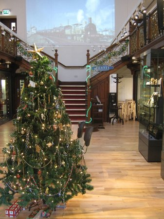 The Falconer Museum: The Christmas tree 2013