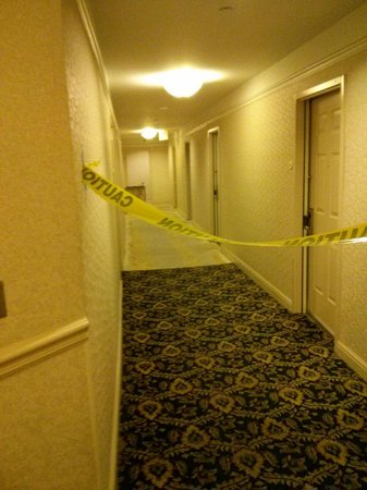 Radisson Martinique on Broadway: The room is *behind* that tape.