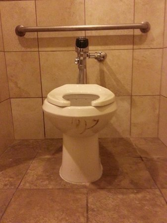 Embassy Suites by Hilton Seattle North Lynnwood : The one and only bathroom in the pool area with feces caked on the toilet for at least 2 days.