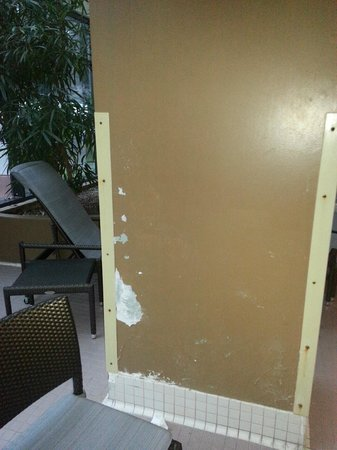 Embassy Suites by Hilton Seattle North Lynnwood : Paint peeling and chipping off walls in pool area