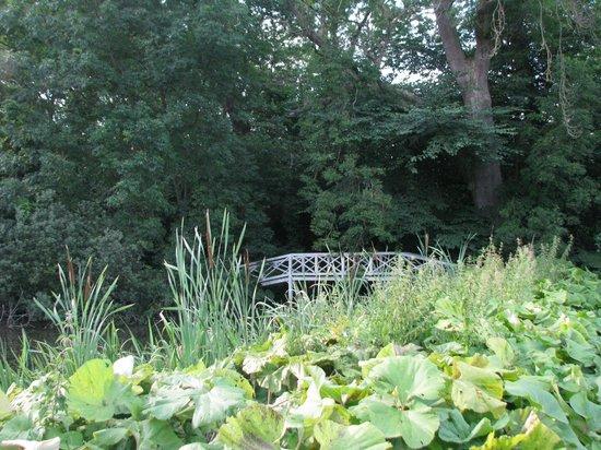 The Karen Blixen Museum: tuin of park van museum