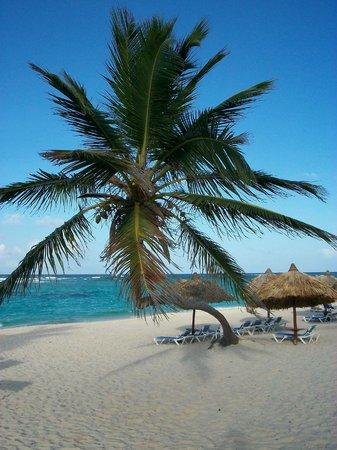 Luxury Bahia Principe Ambar Blue: A little bit of paradise