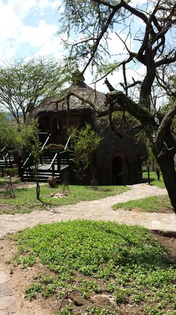 Serengeti Serena Safari Lodge : Rooms