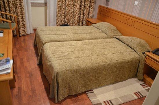 Hotel Avenida Park: Room